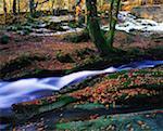 Glenmacnass Waterfall, Co Wicklow Ireland