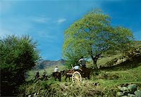 Co Kerry, Killarney, Gap of Dunloe    Stock Photo - Premium Rights-Managednull, Code: 832-02254101
