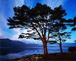 Co Kerry, Killarney, Lough Leane- Morning    Stock Photo - Premium Rights-Managed, Artist: IIC, Code: 832-02254519