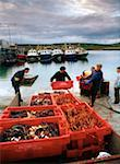 Portmagee, Ring of Kerry, County Kerry, Ireland; Lobster fishermen at work    Stock Photo - Premium Rights-Managed, Artist: IIC, Code: 832-02255324
