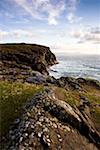 Dunfanaghy, County Donegal, Ireland; Coastal Irish field and seascape    Stock Photo - Premium Rights-Managed, Artist: IIC, Code: 832-02255635