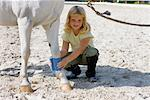 Little Girl Wrapping Bandage Around Horse's Leg    Stock Photo - Premium Rights-Managed, Artist: Lothar Wels, Code: 700-02257786