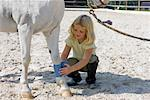 Little Girl Wrapping Bandage Around Horse's Leg    Stock Photo - Premium Rights-Managed, Artist: Lothar Wels, Code: 700-02257787