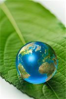 Earth Marble on Green Leaf Stock Photo - Premium Rights-Managednull, Code: 700-02264010