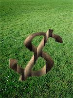 Dollar Sign Cut Out in Field of Grass    Stock Photo - Premium Rights-Managednull, Code: 700-02265002