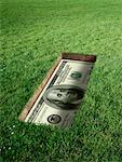 American Currency in Grave    Stock Photo - Premium Rights-Managed, Artist: Marc Simon, Code: 700-02265004