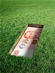 Singaporean Currency in Grave    Stock Photo - Premium Rights-Managed, Artist: Marc Simon, Code: 700-02265014