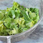 Lettuce    Stock Photo - Premium Rights-Managed, Artist: foodanddrinkphotos, Code: 824-02291714