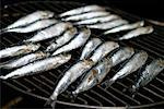 Sardines    Stock Photo - Premium Rights-Managed, Artist: foodanddrinkphotos, Code: 824-02293382