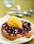 Summer fruit tartlet with passionfruit sorbet    Stock Photo - Premium Rights-Managed, Artist: Photocuisine, Code: 825-02304677
