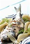 sea bream with fennel    Stock Photo - Premium Rights-Managed, Artist: Photocuisine, Code: 825-02306513