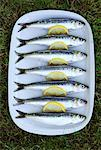sardines    Stock Photo - Premium Rights-Managed, Artist: Photocuisine, Code: 825-02306865