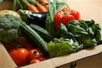 Close up of a box full of organic vegetables    Stock Photo - Premium Rights-Managed, Artist: ableimages, Code: 822-02315579