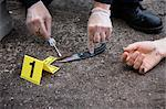 Police Officer's Hands with Evidence and Corpse on Crime Scene, Toronto, Ontario, Canada