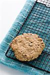 Homemade Oatmeal Raisin Cookie on Cooling Tray    Stock Photo - Premium Rights-Managed, Artist: Jennifer Burrell, Code: 700-02348995