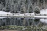 Pond and snowy forest Stock Photo - Premium Royalty-Freenull, Code: 621-02358150