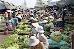 Vietnam, Hue, market, vegetables for sale. Stock Photo - Premium Royalty-Freenull, Code: 610-02374677