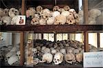 Skulls at the Killing Fields, Phnom Penh, Cambodia