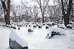 Headstones in Cemetery Covered in Fresh Snow, Toronto, Ontario, Canada    Stock Photo - Premium Royalty-Free, Artist: Philip Rostron, Code: 600-02377485