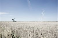 Pump Jack in Prairie Field, Alberta, Canada    Stock Photo - Premium Rights-Managednull, Code: 700-02377936