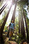 Couple Walking on Log in Forest, Santa Cruz, California, USA    Stock Photo - Premium Rights-Managed, Artist: Ty Milford, Code: 700-02386011