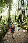 Couple Walking on Path in Forest, Santa Cruz, California, USA    Stock Photo - Premium Rights-Managed, Artist: Ty Milford, Code: 700-02386013