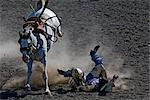 Man Being Thrown From Horse in Rodeo, Kainai Nation, South of Fort Macleod, Alberta, Canada    Stock Photo - Premium Rights-Managed, Artist: Moritz Schönberg, Code: 700-02519043