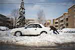 Car Stuck in Snow, Toronto, Canada    Stock Photo - Premium Rights-Managed, Artist: Philip Rostron, Code: 700-02519147