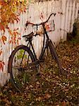 Old Bicycle Leaning Against White Picket Fence    Stock Photo - Premium Rights-Managed, Artist: Natasha Nicholson, Code: 700-02594158