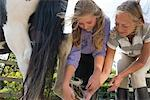 Mature woman and young girl holding and cleaning a horse hoof    Stock Photo - Premium Rights-Managed, Artist: ableimages, Code: 822-02621076