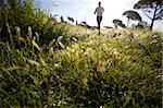 Person jogging in countryside Stock Photo - Premium Royalty-Free, Artist: AlaskaStock, Code: 622-02621564