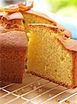 Madeira Cake    Stock Photo - Premium Rights-Managed, Artist: foodanddrinkphotos, Code: 824-02625209