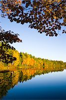 Autumn Forest by Lake, Vermont, USA    Stock Photo - Premium Rights-Managednull, Code: 700-02669720