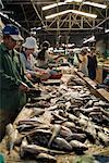 Fish Market, Siem Reap, Cambodia    Stock Photo - Premium Rights-Managed, Artist: Horst Herget, Code: 700-02670079