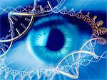 Genetics research, conceptual computer artwork. Human eye surrounded by molecules of DNA (deoxyribonucleic acid). Stock Photo - Premium Royalty-Free, Artist: Cusp and Flirt, Code: 679-02681907