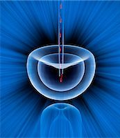 sperme - In vitro fertilisation, conceptual computer artwork. Stock Photo - Premium Royalty-Freenull, Code: 679-02684654