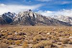 Lone Pine Peak, Alabama Hills, Lone Pine, Inyo County, Owens Valley, Sierra Nevada Range, California, USA    Stock Photo - Premium Rights-Managed, Artist: Lalove Benedict, Code: 700-02686526