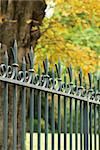 Ornate wrought iron fence Stock Photo - Premium Royalty-Free, Artist: Robert Harding Images, Code: 633-02691261