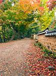 Temple Wall and Autumn Leaves, Seonun Temple, Mt Seonun, Seonunsan Provincial Park, Jeollabuk-do, South Korea    Stock Photo - Premium Rights-Managed, Artist: Chris McGuire, Code: 700-02698399