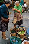 Woman selling figs with an old fashioned balance in the market at Pescia in Tuscany, Italy, Europe    Stock Photo - Premium Rights-Managed, Artist: Robert Harding Images, Code: 841-02704649