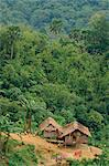 Aerial view over huts of the Orangasli Village and surrounding rainforest canopy, Malaysia, Southeast Asia, Asia