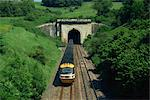High speed train emerging from tunnel in the Box Valley, Avon, England, United Kingdom, Europe    Stock Photo - Premium Rights-Managed, Artist: Robert Harding Images, Code: 841-02707981