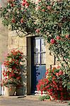 Exterior of a blue door surrounded by red flowers, roses and geraniums, St. Cado, Morbihan, Brittany, France, Europe    Stock Photo - Premium Rights-Managed, Artist: Robert Harding Images, Code: 841-02708662