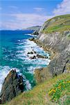 Slea Head, Dingle Peninsula, County Kerry, Munster, Republic of Ireland (Eire), Europe    Stock Photo - Premium Rights-Managed, Artist: Robert Harding Images, Code: 841-02710409