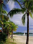 Pelangi Beach, Langkawi Island, Malaysia, Asia