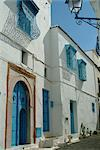 Sidi Bou Said, near Tunis, Tunisia, North Africa, Africa