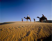 rajasthan camel - Caravan of people and camels in the Thar Desert, Rajasthan state, India, Asia    Stock Photo - Premium Rights-Managednull, Code: 841-02715068
