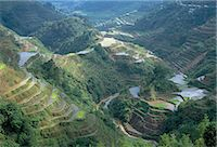 philippine terrace farming - Banaue terraced rice fields, UNESCO World Heritage Site, northern area, island of Luzon, Philippines, Southeast Asia, Asia    Stock Photo - Premium Rights-Managednull, Code: 841-02715494