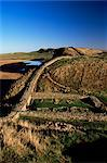 Steelrigg east to Craglough, Roman Wall, Hadrian's Wall, UNESCO World Heritage Site, Northumberland (Northumbria), England, United Kingdom, Europe    Stock Photo - Premium Rights-Managed, Artist: Robert Harding Images, Code: 841-02717917