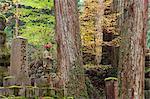 Okunoin graveyard, site of 20000 Buddhist gravestones, Koya-san, Kansai (Western Province), Honshu, Japan, Asia